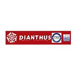 Dianthus logo